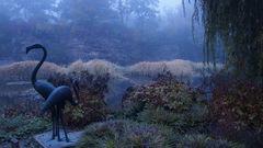 Herbstimpression am Seerosenteich