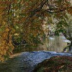 Herbstimpression an der Konstanzer Ach