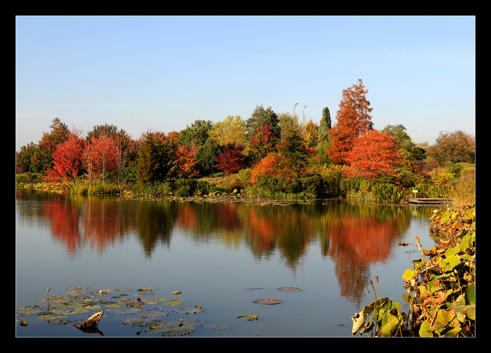 Herbstimpression im Arboretum, überarbeitet