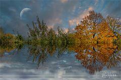 Herbstimpression ... linker Niederrhein