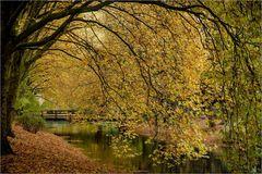 Herbstimpression XIII