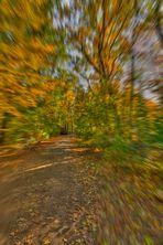 Herbstimpression_02