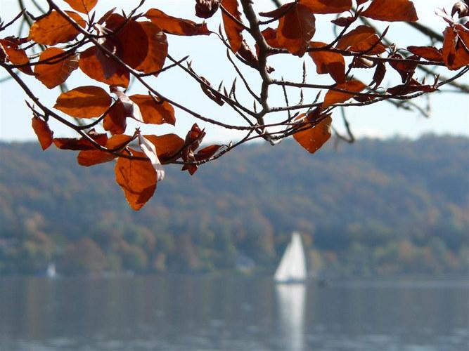 Herbstimpression04