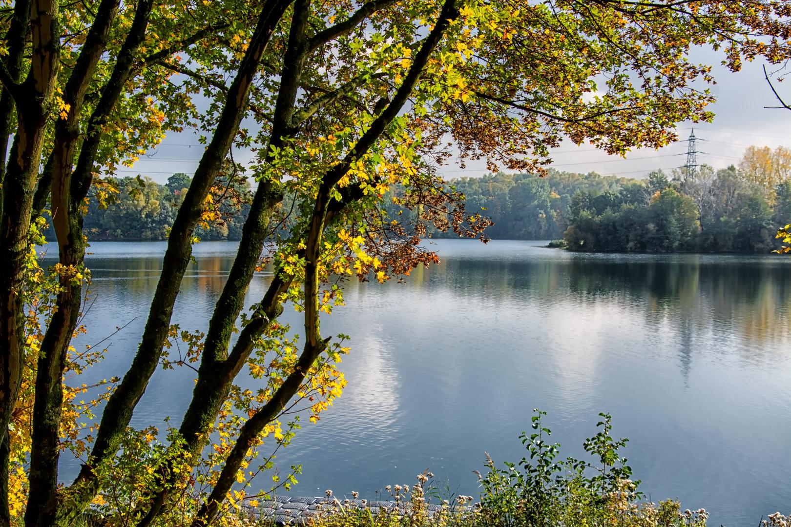 Herbstimpressionen..