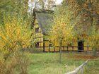 Herbstimpressionen (4) ...