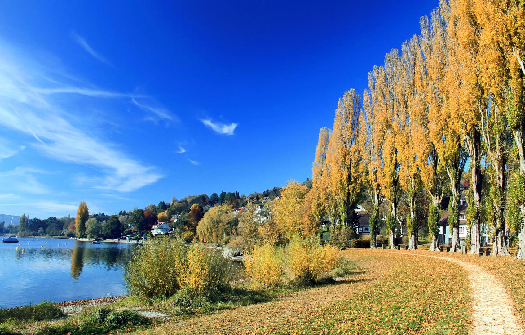 Herbstimpressionen 5