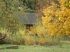Herbstimpressionen (7) ...