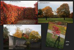 ...HerbstImpressionen...