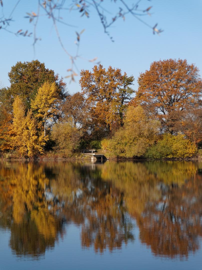 Herbstimpressionen am See
