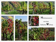 Herbstimpressionen aus einem fränkischen Weinberg