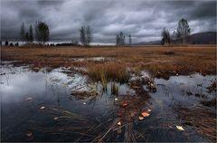 Herbstimpressionen - Betrachten auf eigene Gefahr!