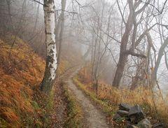 Herbstimpressionen! - L'automne nous invite à rêver!