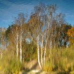 Herbstimpressionismus