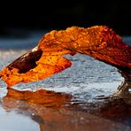 Herbstimpresssionen