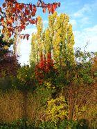 Herbstkitsch