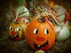 Herbstkürbis-lächeln-