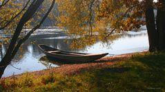 Herbstlandschaft am Rhein mit Weidling