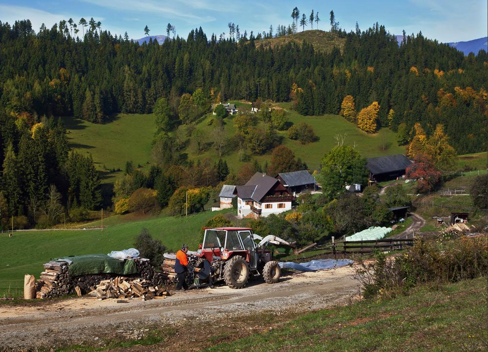 Herbstlandschaft auf dem Plesch!