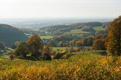 Herbstlandschaft im Teutoburger Wald