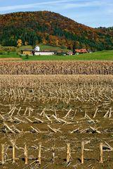 Herbstlandschaft in Hörgas bei Graz !