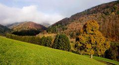Herbstlandschaft in Kehr auf dem Weg zum Plesch!