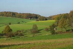 Herbstlandschaft mit Hochsitz