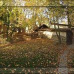 Herbstlaub.....