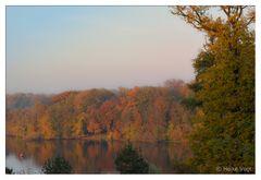 Herbstlaub am Glienicker Horn
