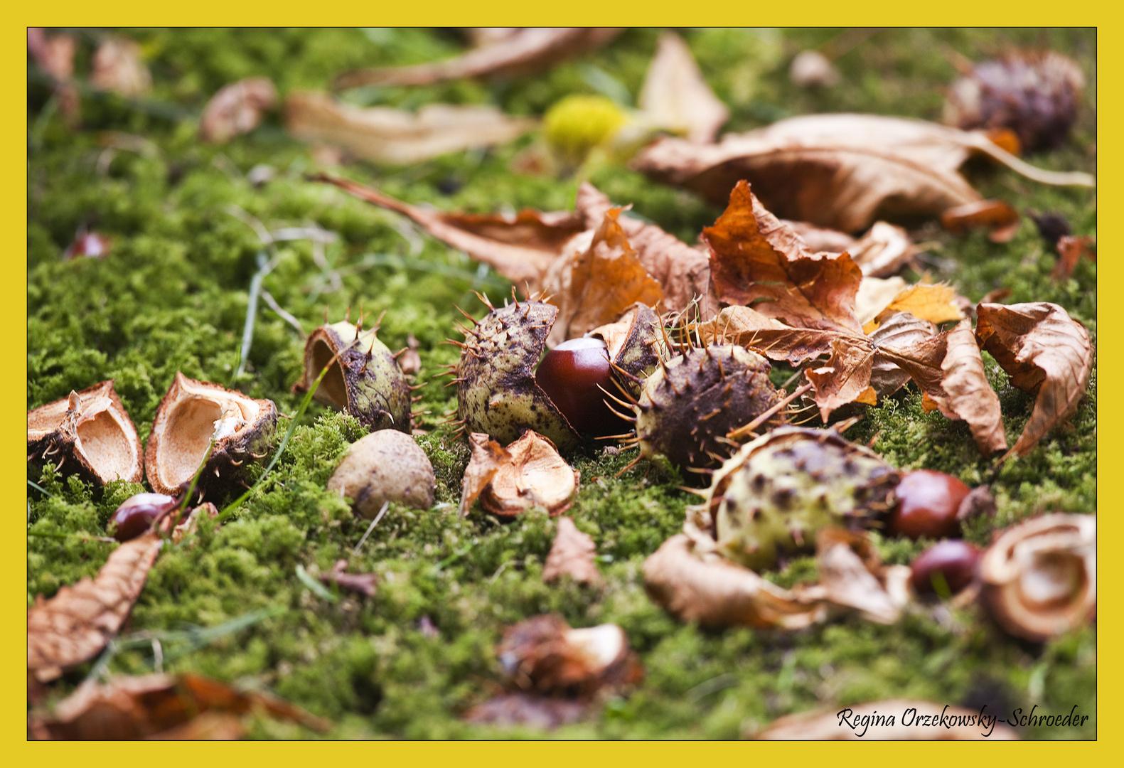 Herbstlese