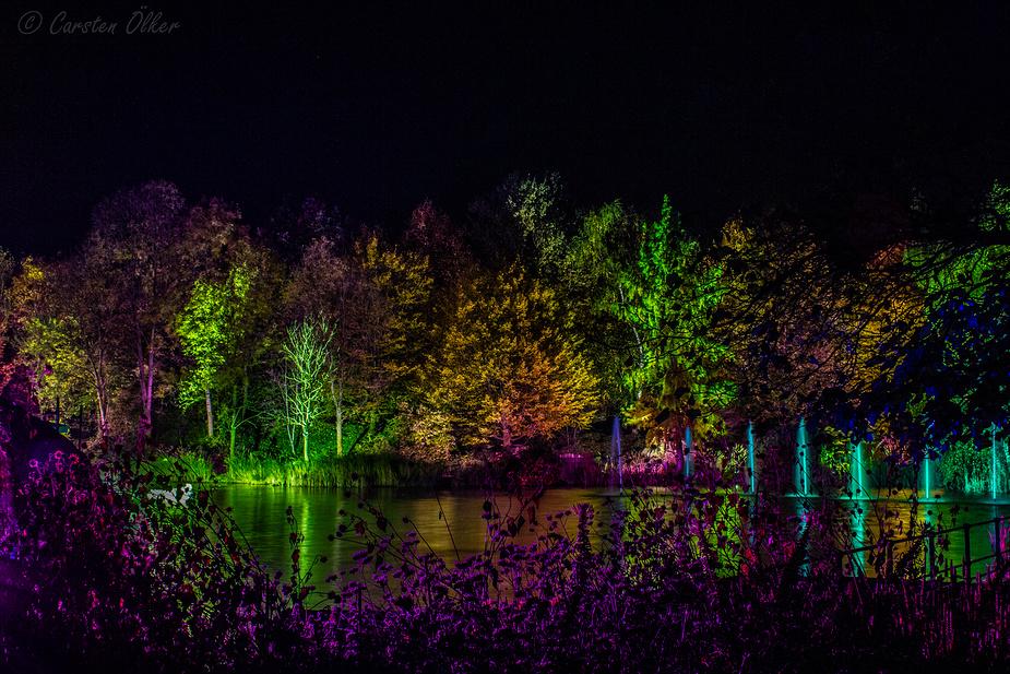Herbstleuchten 2012 - Bäume