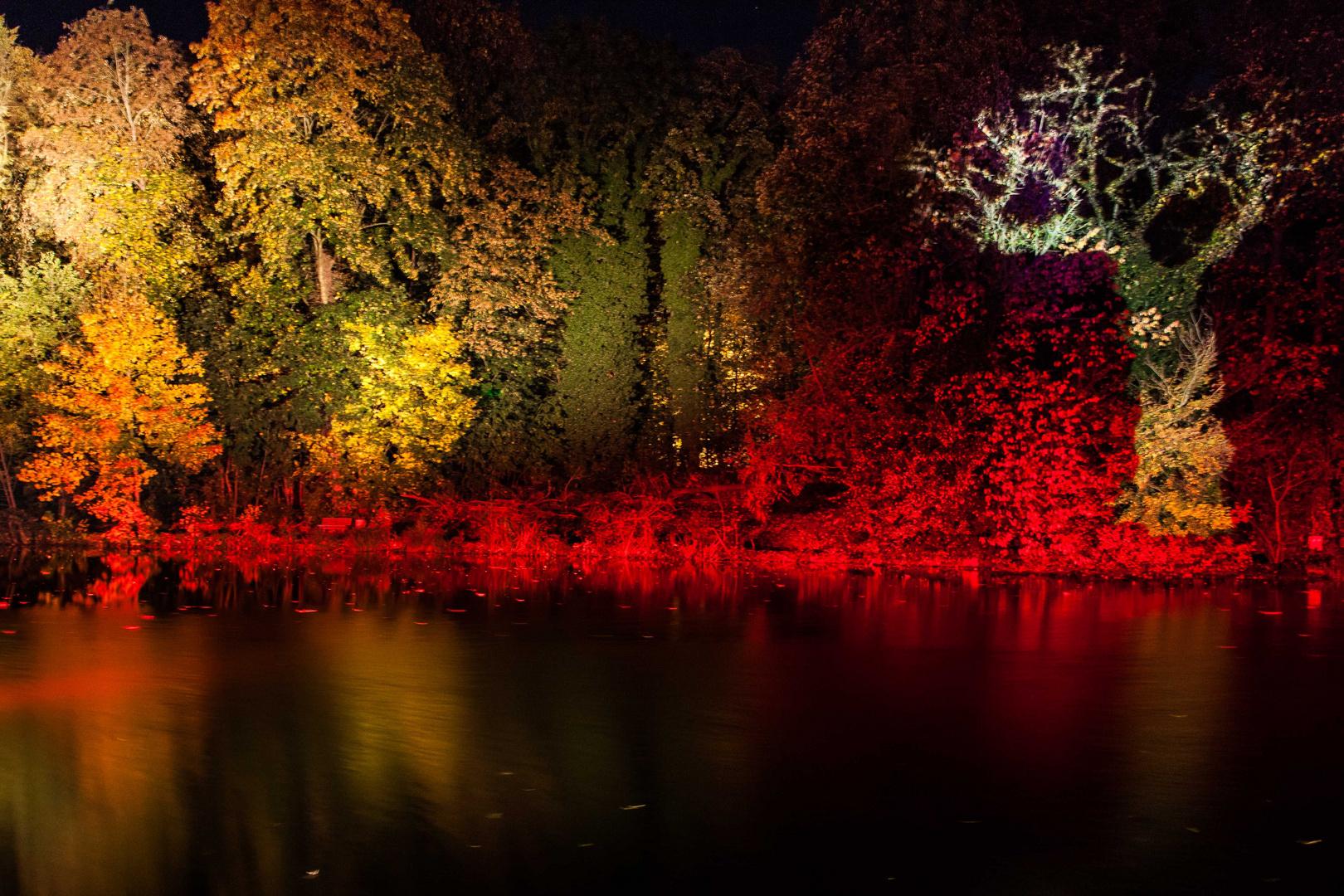 Herbstleuchten 2013_3