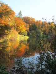 Herbstleuchten....