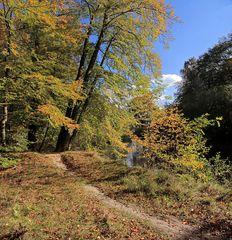 Herbstleuchten an der Hunte