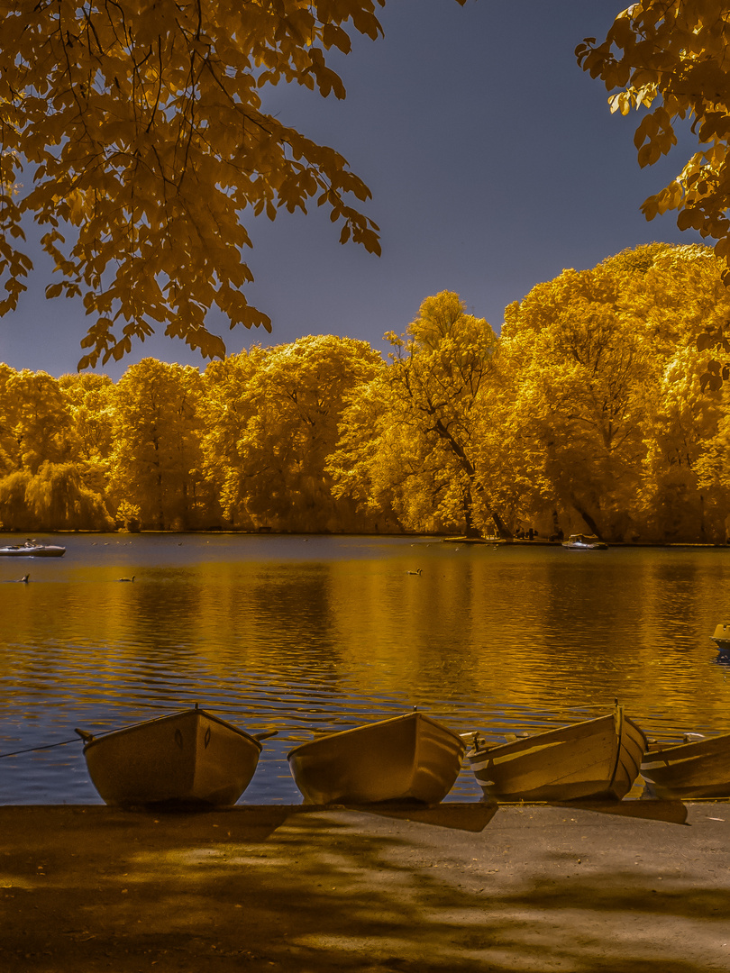 Herbstleuchten