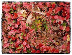Herbstlich #2