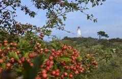 Herbstlich am Leuchtturm