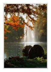 Herbstlich III