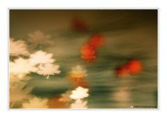 Herbstlich VI