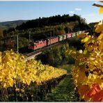 Herbstlich warmes am Bözberg