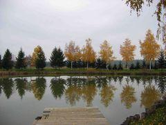 Herbstliche Bäume spiegeln sich im Teich