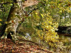 Herbstliche Farbpalette