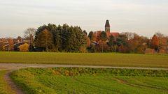 Herbstliche Feldflur mit Wintergerste