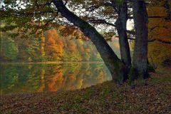 Herbstliche Glörtalsperre ...