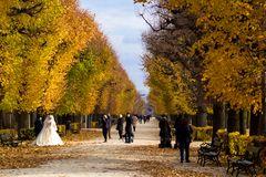Herbstliche Hochzeit