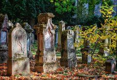 Herbstliche Impressionen Hoppenlau