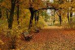 Herbstliche Impressionen4