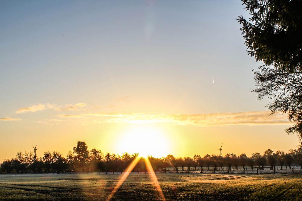 Herbstliche Morgensonne