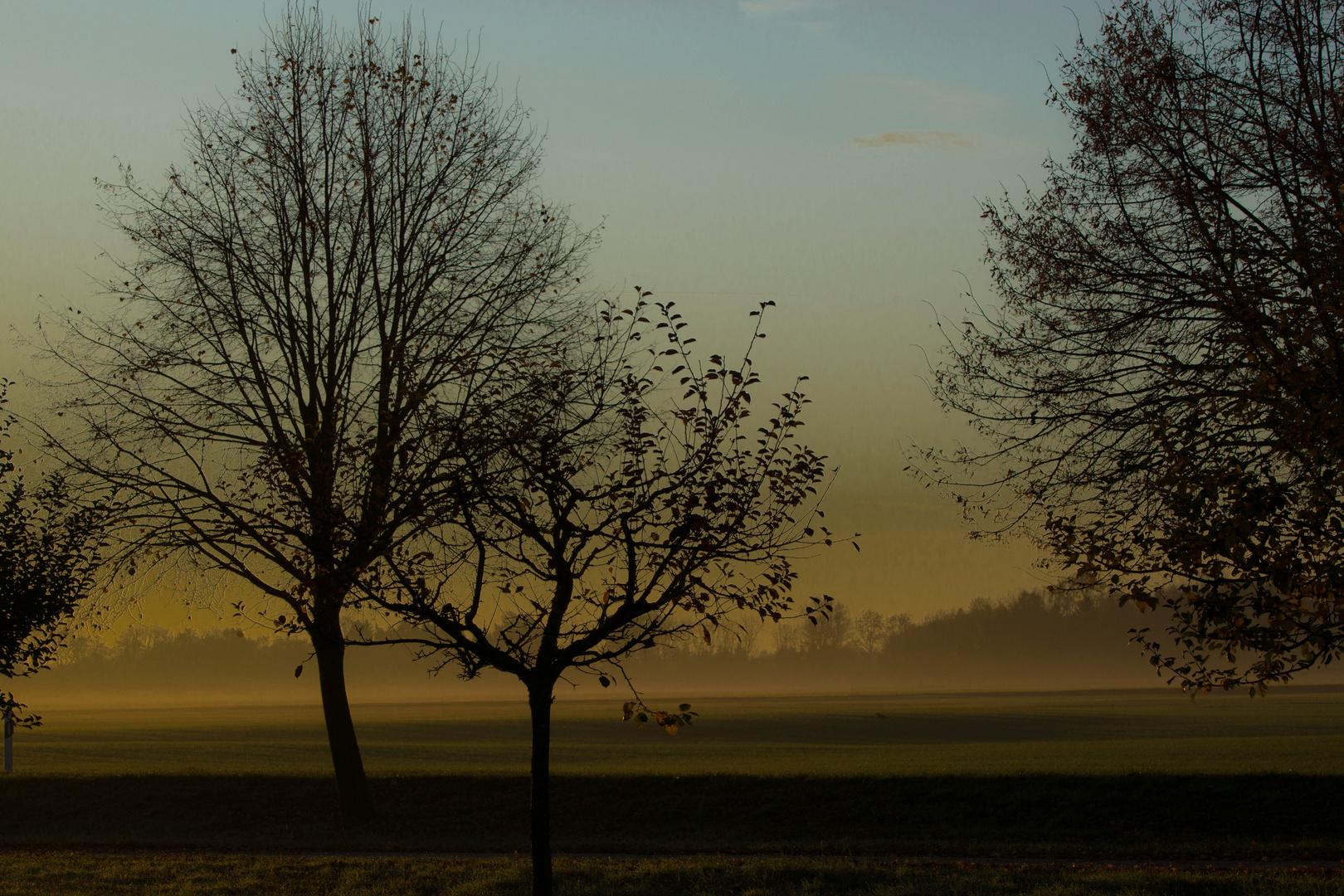 Herbstliche Morgenstimmung