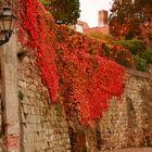herbstliche Stadtmauer