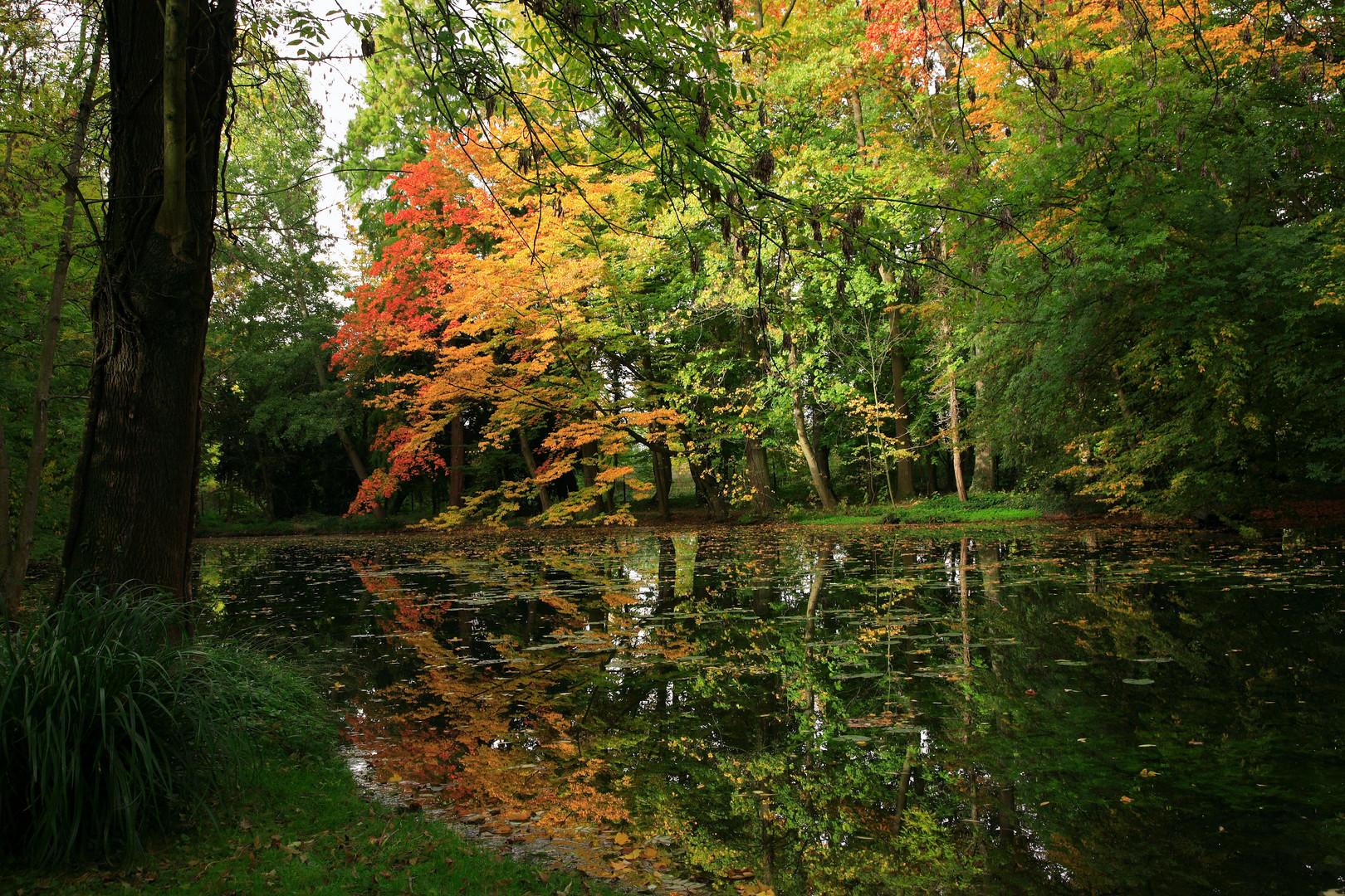 Herbstliche Stimmung im Schlosspark